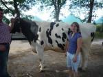 Landwirtschaft News & Agrarwirtschaft News @ Agrar-Center.de | Foto: Hohe Tiergesundheit mit hoher Milchleistung und einer optimaler Nutzungsdauer müssen nicht im Gegensatz stehen!