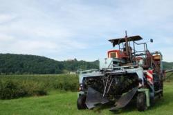 Landwirtschaft News & Agrarwirtschaft News @ Agrar-Center.de | Foto: Ernte der