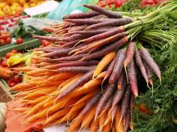 Landwirtschaft News & Agrarwirtschaft News @ Agrar-Center.de | Foto: Gemüse - am besten frisch vom Erzeuger (Foto: Proplanta).