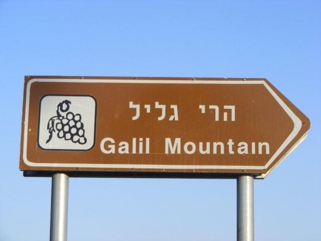 Sachsen-News-24/7.de - Sachsen Infos & Sachsen Tipps | Das Twin Wineries Projekt führt eine Verkostung am israelischen Stand bei der ProWein durch