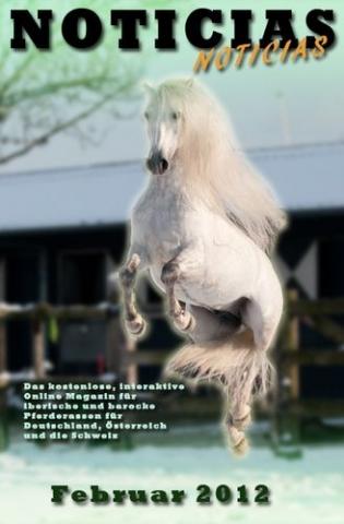 China-News-247.de - China Infos & China Tipps | Die Februar-Ausgabe von Noticias-Online informiert aktuell über zahlreiche Themen rund um das Barockpferd