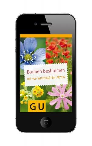 Rheinland-Pfalz-Info.Net - Rheinland-Pfalz Infos & Rheinland-Pfalz Tipps | GU App Blumen bestimmen