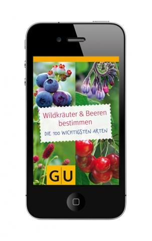 Rheinland-Pfalz-Info.Net - Rheinland-Pfalz Infos & Rheinland-Pfalz Tipps | GU App