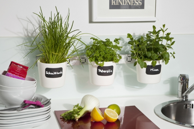 Duesseldorf-Info.de - Düsseldorf Infos & Düsseldorf Tipps | Dekorativ und praktisch: Die Kräuter- und Pflanzenleiter kann je nach Geschmack und Nutzen überall griffbereit positioniert werden.