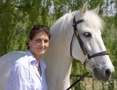 Stuttgart-News.Net - Stuttgart Infos & Stuttgart Tipps | Ein Führungsseminar mit Pferden ist eine effiziente Methode zur Entwicklung der Führungspersönlichkeit