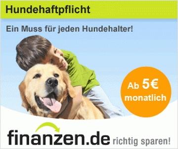 Information zur Hundeversicherung von 24finanzen.de