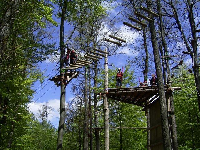 Sachsen-Anhalt-Info.Net - Sachsen-Anhalt Infos & Sachsen-Anhalt Tipps | Saisonstart in den Kletterwäldern ist am 31.03.2012