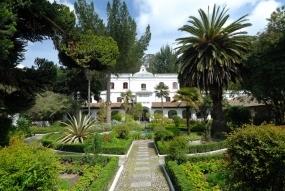 Pflanzen Tipps & Pflanzen Infos @ Pflanzen-Info-Portal.de | Rundreise durch Ecuador