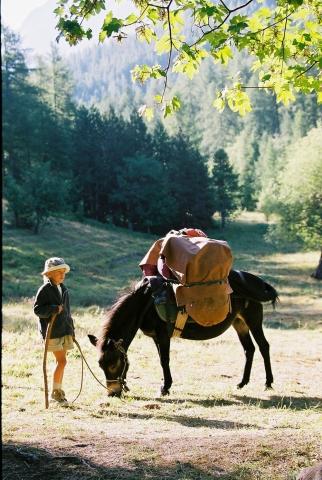 Italien-News.net - Italien Infos & Italien Tipps | Wandern mit einem Esel in Frankreich