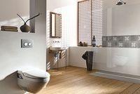Podcasts @ Open-Podcast.de: Dusch-WC Test - Das WC, das den Po mit Wasser reinigt: für alle, denen die Trockenreinigung mit Papier nicht genügt.