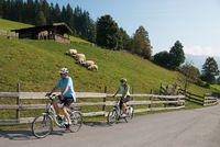 Elektroauto Infos & News @ ElektroMobil-Infos.de. Mit dem Fahrrad über die Alpen. Urige Almen sind mit dem E-Bike bequem zu erreichen.