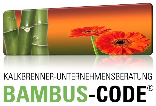Hessen-News.Net - Hessen Infos & Hessen Tipps | Strategieentwicklung mit dem Bambus-Code