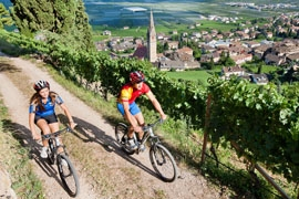 Ostern-247.de - Infos & Tipps rund um Geschenke | Oberhalb von Tramin fahren Biker durch sonnenverwöhnte Weinberge zu den schönsten Aussichtspunkten.