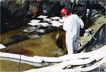 Rom-News.de - Rom Infos & Rom Tipps | Ölverschmutzung auf Wasseroberflächen beseitigen