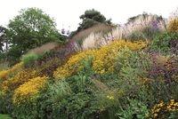 Garten-Landschaftsbau-Portal.de - Infos & Tipps rund um Garten- & Landschaftsbau (GaLaBau) | Floriade 2012: Blumen, Blumen, Blumen und eine Seilbahn hoch oben: Auf der