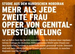 Muslim-Portal.net - News rund um Muslims & Islam | Islam & Muslim Seite - Foto: Auf 40 Seiten fasst der Bericht zusammen, was im Rahmen einer repräsentativen Umfrage unter Frauen aus der gesamten kurdischen Autonomieregion des Irak in anderthalb Jahren gesammelt wurde. Demnach sind weit mehr als die Hälfte der Frauen genital verstümmelt, in manchen Regionen rund 80 Prozent.