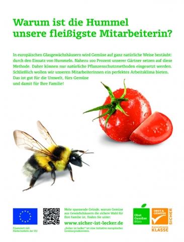 Hamburg-News.NET - Hamburg Infos & Hamburg Tipps | Anzeigenmotiv der Kampagne