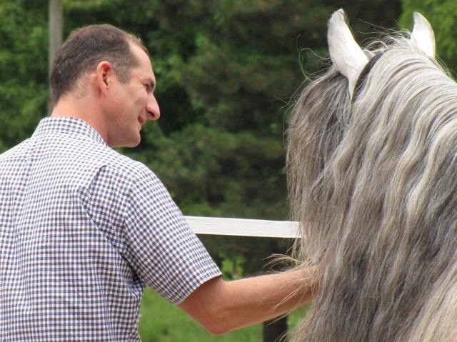 Tier Infos & Tier News @ Tier-News-247.de | Führungskräfteentwicklung mit Pferden ist ein effizientes Management-Training