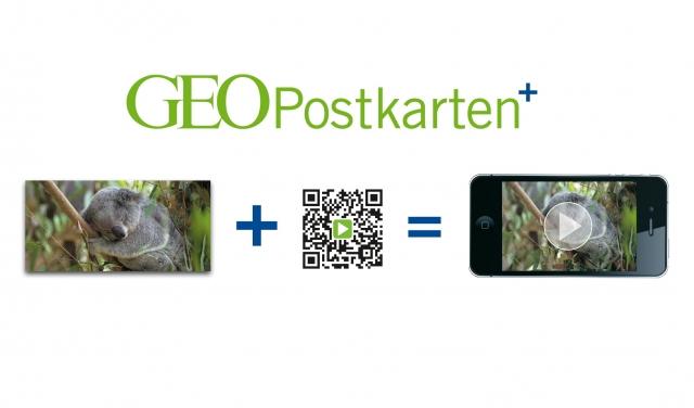 Europa-247.de - Europa Infos & Europa Tipps | Das beeindruckende GEO-Tierfoto von der Vorderseite der Panorama-Postkarte