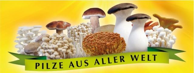 Speisepilze EU eröffnet Pfifferlinge Saison
