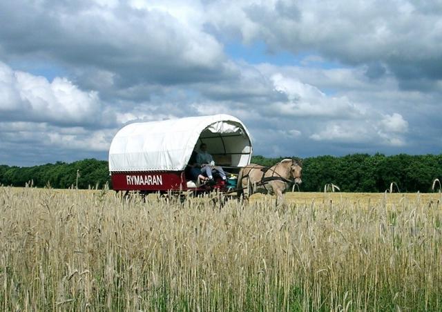 Tschechien-News.Net - Tschechien Infos & Tschechien Tipps | Planwagenferien in Holland