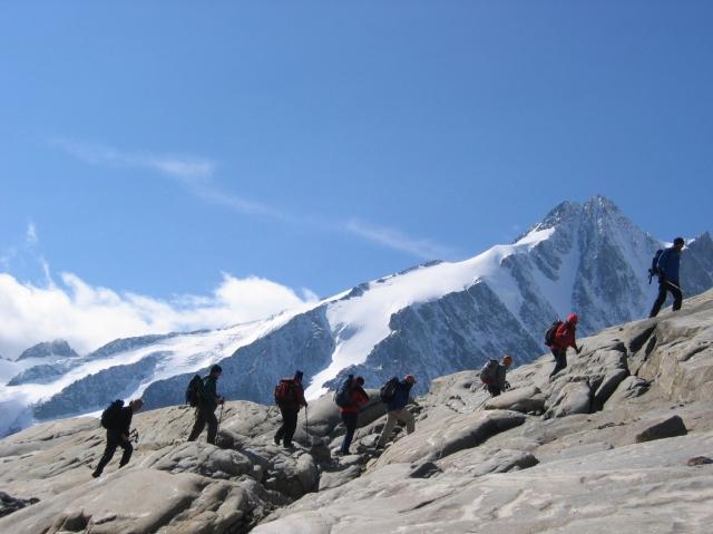 Pflanzen Tipps & Pflanzen Infos @ Pflanzen-Info-Portal.de | Bei den Bergtouren geht's hoch hinaus.