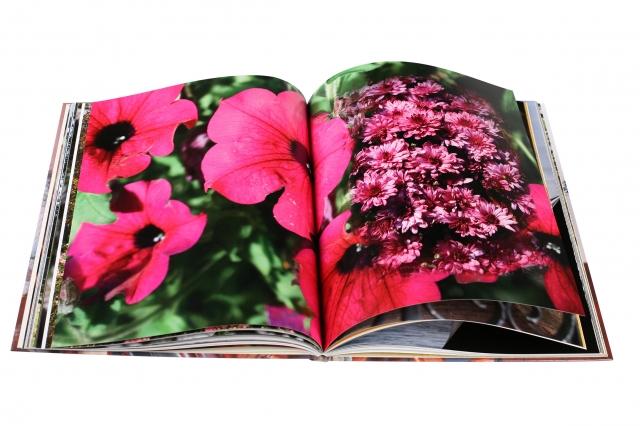 Ostern-247.de - Infos & Tipps rund um Geschenke | Das Garten-Fotobuch
