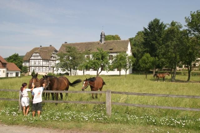 Hotel Infos & Hotel News @ Hotel-Info-24/7.de | Pilgern in Lippe z. B. zum Kloster Falkenhagen