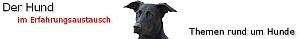 News - Central: Der Hund im Erfahrungsaustausch