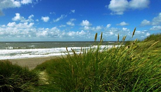 Hotel Infos & Hotel News @ Hotel-Info-24/7.de | Die Themen Nachhaltigkeit und Umweltschutz spielen für die Gemeinde der Nordseeinsel Juist eine große Rolle