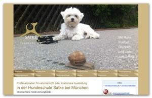 Tier Infos & Tier News @ Tier-News-247.de | Hundeschule