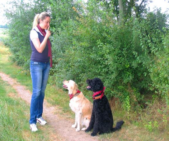 App News @ App-News.Info | Sie macht freundliche Hunde: Trainerin Kirstin Müller betreibt in Wegberg am Niederrhein eine mobile Hundeschule