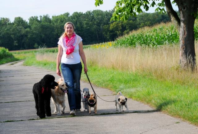 Einkauf-Shopping.de - Shopping Infos & Shopping Tipps | Leinenführig ohne Leckerlis: Für die Wegberger Hundetrainerin Kirstin Müller ist Belohnung in Form von Futter kein effizientes Mittel in der Hundeerziehung