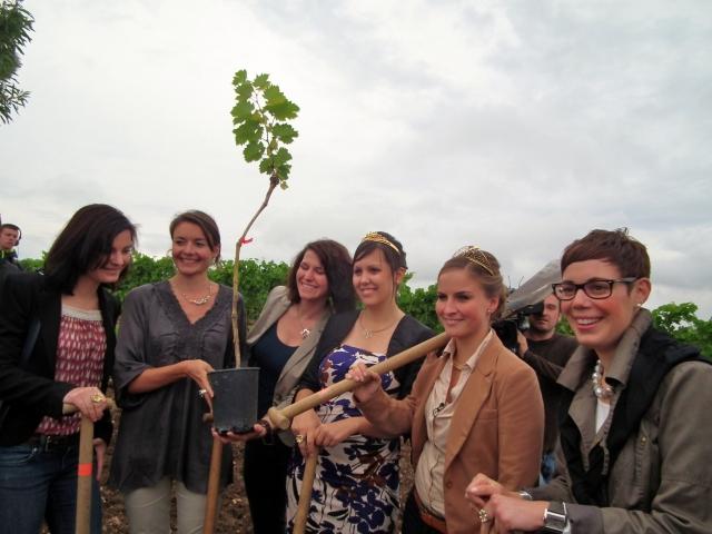 Elektroauto Infos & News @ ElektroMobil-Infos.de. Sieben Weinköniginnen bepflanzen den