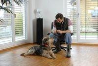 Berlin-News.NET - Berlin Infos & Berlin Tipps | Ein Parkettboden ist im Laufe seines Lebens den unterschiedlichsten Belastungen ausgesetzt, für die er eine gründliche, aber behutsame Pflege benötigt.