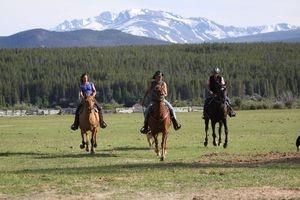 News - Central: Reiterreise-Tipp auf