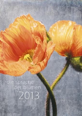 Medien-News.Net - Infos & Tipps rund um Medien | Die Sprache der Blumen
