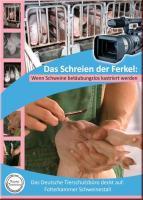 Landwirtschaft News & Agrarwirtschaft News @ Agrar-Center.de | Foto: Die Videodokumentation >> Das Schreien der Ferkel – wenn Schweine betäubungslos kastriert werden << kann für 13,99 € über den Shop des Deutschen Tierschutzbüros bezogen werden.