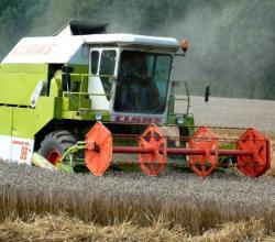 Landwirtschaft News & Agrarwirtschaft News @ Agrar-Center.de | Foto: Die Getreideernte 2008 übertrifft die Erwartungen der Landwirte (Foto: Proplanta).