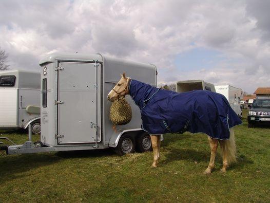 Frankreich-News.Net - Frankreich Infos & Frankreich Tipps | www.mit-pferden-reisen.de