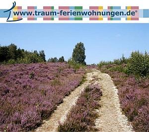 Bremen-News.NET - Bremen Infos & Bremen Tipps | Traum Ferienwohnungen GmbH & Co. KG