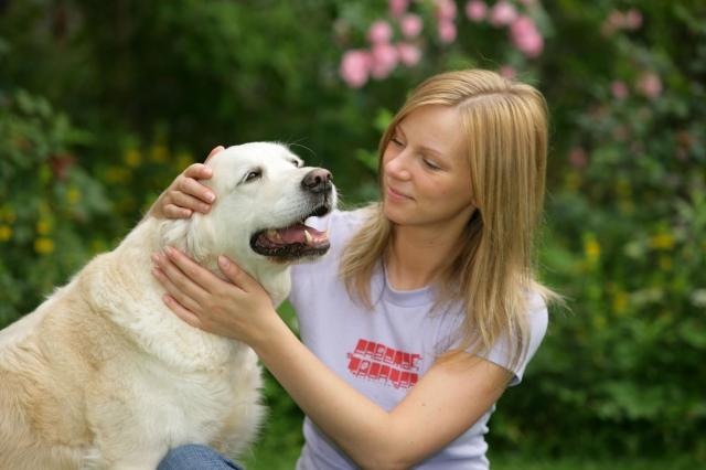 Tier Infos & Tier News @ Tier-News-247.de | WZF GmbH / Zentralverband Zoologischer Fachbetriebe e.V. (ZZF)