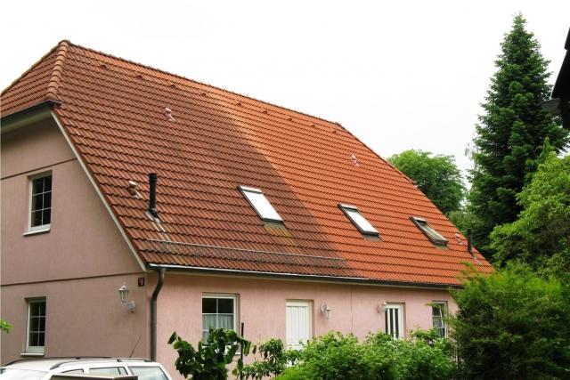 Dachsanierung Steindl - Dachreinigung