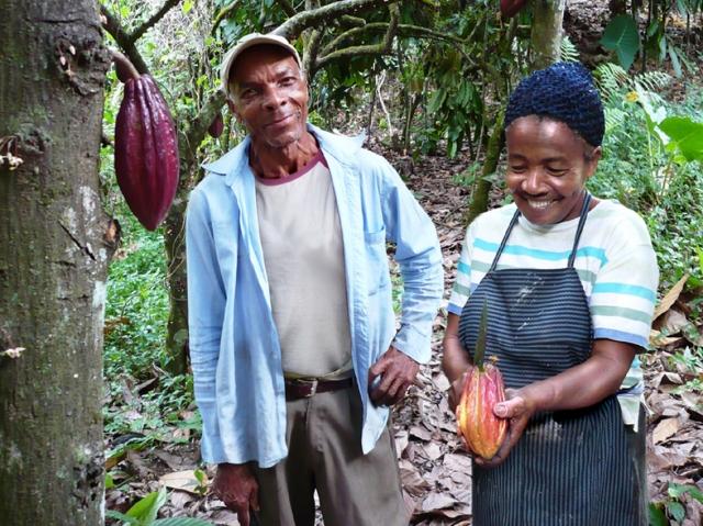 BIO @ Bio-News-Net | EcoFinia Gmbh  / Vivani Bioschokolade