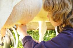 Landwirtschaft News & Agrarwirtschaft News @ Agrar-Center.de | Foto: Anpacken statt Zuschauen! Kinder mit Rheuma auf dem Schulbauernhof Hutzelberg (Bildquelle: Carina Jahn).