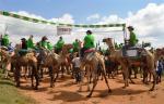 Ost Nachrichten & Osten News | Foto: Neben verschiedenen Wettbewerben im Kamelrennen, sowohl für Amateure als auch für Profis, sind ein 10 Kilometer- Lauf und ein Mountainbike- Rennen Teil des Rahmenprogramms.
