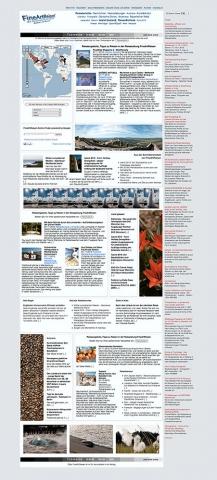 CMS & Blog Infos & CMS & Blog Tipps @ CMS & Blog-News-24/7.de | FineArtReisen