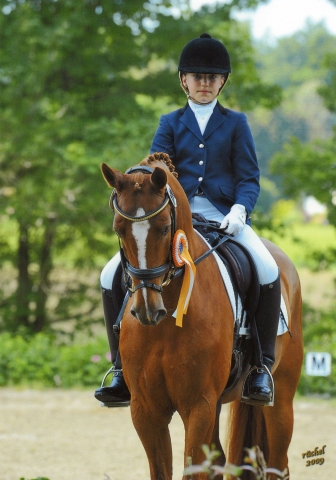 Sport-News-123.de | Ponyforum GmbH