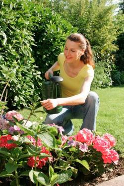 Einkauf-Shopping.de - Shopping Infos & Shopping Tipps | Foto: Beim Gießen mit Kanne oder Gartenschlauch sollte man möglichst immer die Erde treffen. Das spart einerseits Wasser, andererseits werden dadurch Verbrennungen an Blüten und Blättern vermieden. Bild: tdx/OBI.