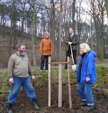 Pflanzen Tipps & Pflanzen Infos @ Pflanzen-Info-Portal.de | Jagdschloss Halberstadt